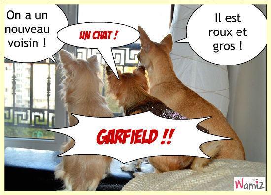 Image du Blog entre-chien-et-chat.centerblog.net